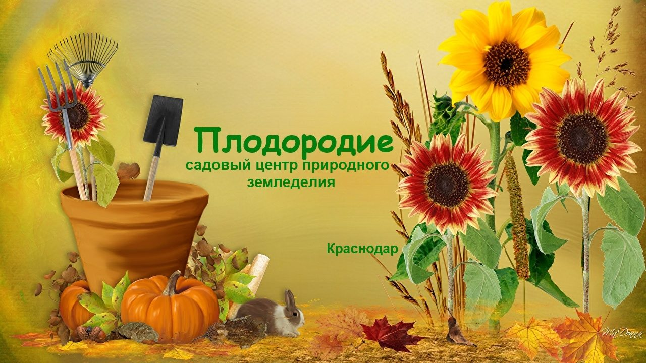 Плодородие. Садовый центр природного земледелия. Краснодар